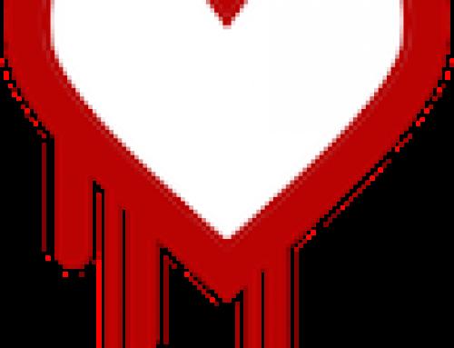 การตรวจสอบ Heartbleed Bug ในองค์กร